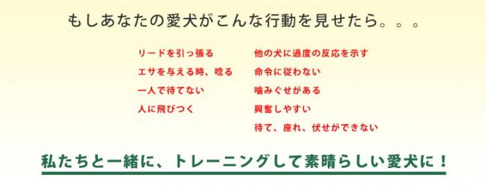 index_read_01
